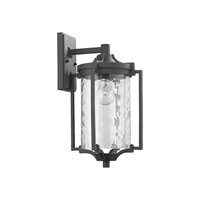 Picture of CH22024BK16-OD1 Outdoor Sconce